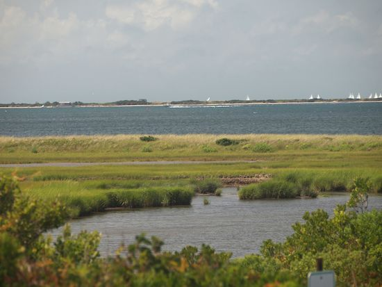 Nantucket Marsh